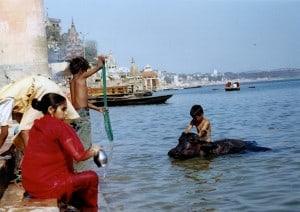 India por daniel yung