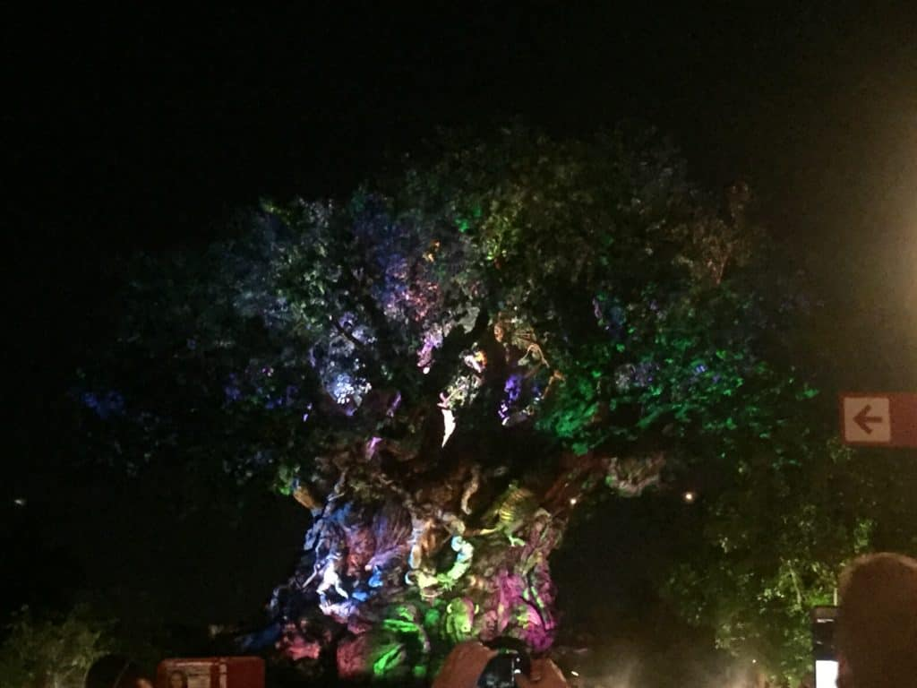 Tree of Life iluminado en Animal Kingdom de Disney World